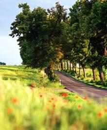 Wiesen, Wälder, Wasser: Idyllen wie auf Kitsch-Postkarten. Eine Floßfahrt (www.treibholz. com) gehört unbedingt dazu