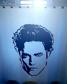 Robert Pattinson auch unter der Dusche - wenn auch nur auf dem Vorhang!