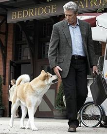 Hachiko holt Parker (Richard Gere) jeden Tag vom Bahnhof ab.