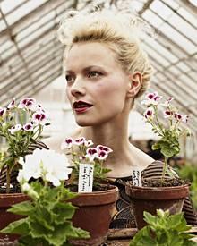 """In der """"Königlichen Gartenakademie"""" suchte Franziska Knuppe sich unter anderem Petunien aus."""