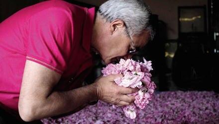 Im Blütenrausch zu schwelgen, lieben Parfümeure wie Francois Demachy.