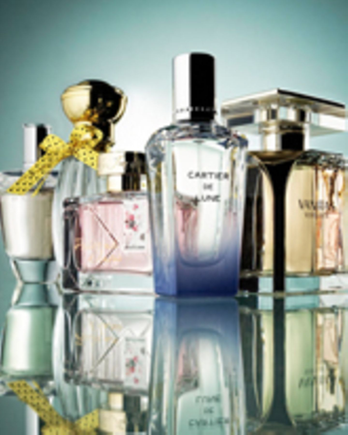Parfum-Newcomer