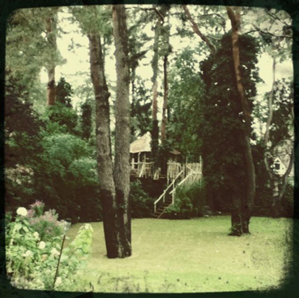 """Kindertraum: Das Baumhaus ließ Christian Berkel für seine Söhne bauen: """"Es hat eine Veranda,  zwölf Quadratmeter Innenfläche und"""