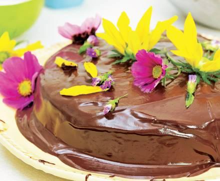 Sommerlicher Schokoladenkuchen mit Kokos-Aroma