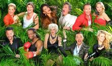 Die Kandidaten Elf sogenannte Prominente (vom Nacktmodel über den Schlagersänger und den Schauspieler bis zur Girl-Group-Schönheit) wagen sich vom 17. Januar bis zum 2. Februar in den Dschungel.