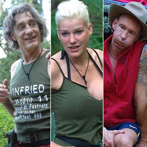 Dschungelcamp: Die können König