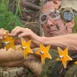 Dschungelcamp: Wendler sei Dank