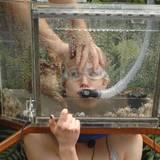 """Dschungelcamp 2014: Tag 16 Der Luftschlauch in Larissas Mund verhindert unter anderem, dass sie immerzu quasselt. Alle Infos zu """"Ich bin ein Star - Holt mich hier raus!"""" im Special bei RTL.de"""