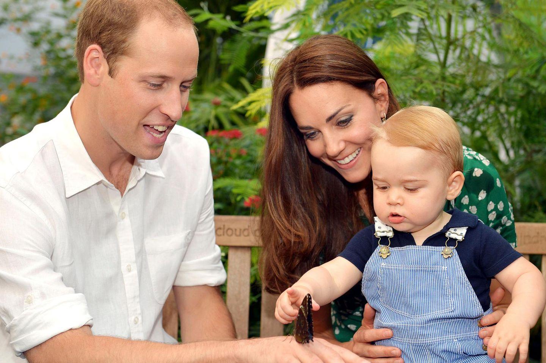 Prinz George bewundert mit seinen Eltern die Schmetterlinge im Londoner Natural History Museum.
