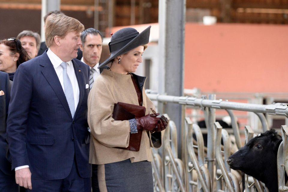 Ministerpräsident Torsten Albig begleitet das Königspaar im Kuhstall