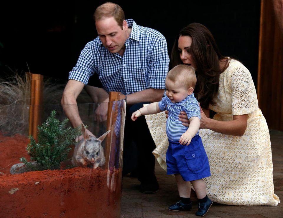 Prinz William und Catherine wollen ihren Kindern liebevolle, bodenständige Eltern sein - ohne übergroßen Medienrummel, eher auf dem Land als in der Hauptstadt, selbst anpackend anstatt ein Heer von Nannys zu beschäftigen. Beim willensstarken und energiegeladenen Klein-George haben sie ihre Elternqualitäten schon testen können.