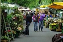 GALA-Tipp: Hamburgs schönste Wochenmärkte