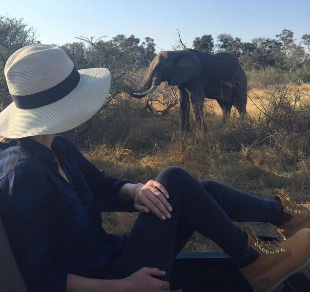 Das sieht ganz nach einer Safari in Afrika aus: Nicky Hilton postet diesen Schnappschuss aus ihren Flitterwochen.
