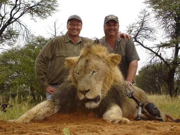 """Dieses Bild von der Jägerseite """"Trophy Hunt America"""" verbreitet sich im Internet und soll den Zahnarzt Walter Palmer (links) mit einem Jagdgefährten und einem anderen Löwen zeigen."""