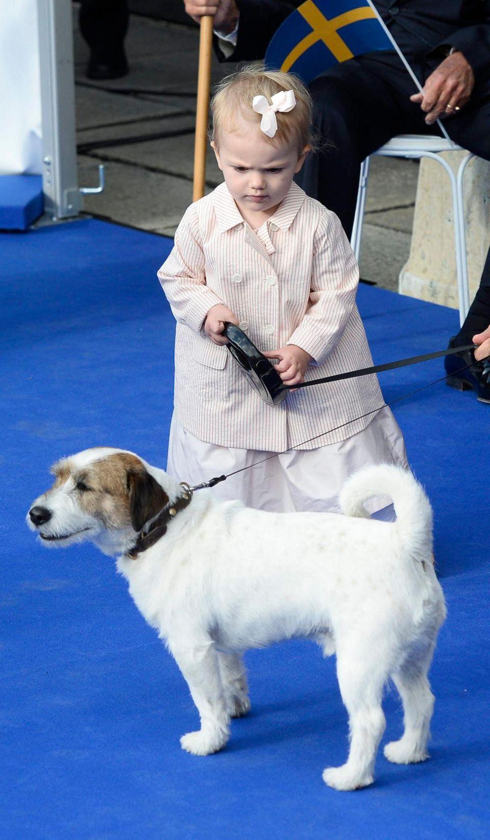 Estelle und Zorro stellen 2013 beim Thronjubiläum von König Carl Gustaf einiges an.