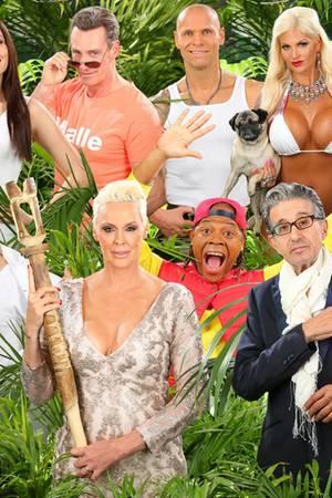 Die Dschungelcamp-Kandidaten 2016