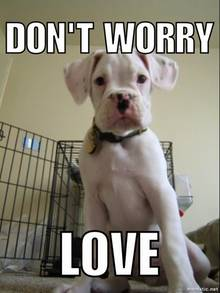 """""""Don't worry, love"""""""