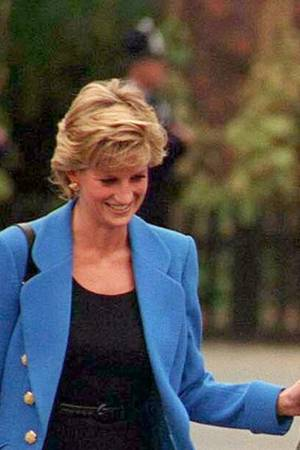 Prinzessin Diana, Prinz Harry und Prinz William