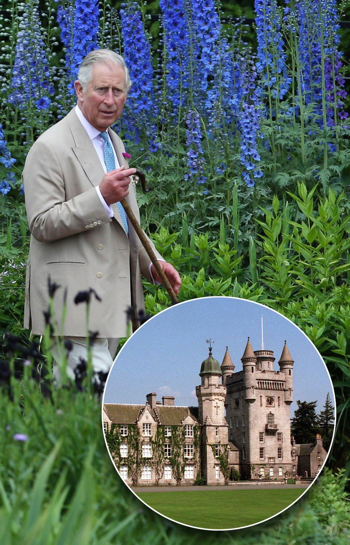 Bio-Gemüse in Gefahr! Auf Highgrove wird jetzt das Geld für Öko-Bauer Prinz Charles, 67, knapp. Das Schloss Balmoral in Schottland ist vielleicht bald europäisches Ausland für die Königin ...