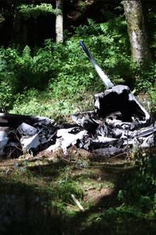 Internet-Millionär Thomas Wagner stirbt bei einem Flugzeugabsturz.