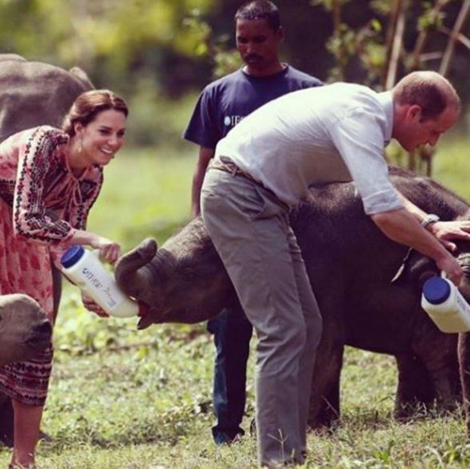 Prinz George: Kate und William in Indien.