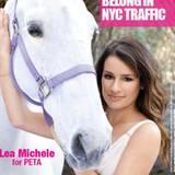 """18. Januar 2011: Die """"Glee""""-Schauspielerin Lea Michele unterstützt die Kampagne der Tierrechtsorganisation PETA USA gegen Pferde"""