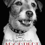 """""""Ich bin Uggie und ich wurde adoptiert"""": Der bekannte Jack-Russell-Terrier aus dem oscarprämierten Film """"The Artist"""" wirbt für d"""