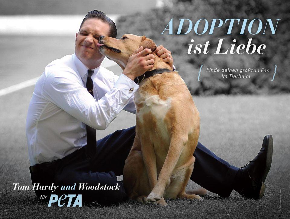 """Nach dem Motto: """"Finde deinen größten Fan im Tierheim"""", macht Tom Hardy auf die Tieradoption aus dem Tierheim aufmerksam."""