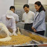 """20. August 2013: Kronprinz Naruhito und Kronprinzessin Masako besuchen die """"Okada Producers' Association"""" im nordjapanischen Sendai, wo Miso, eine aus Sojabohnen bestehende Paste, hergestellt wird."""