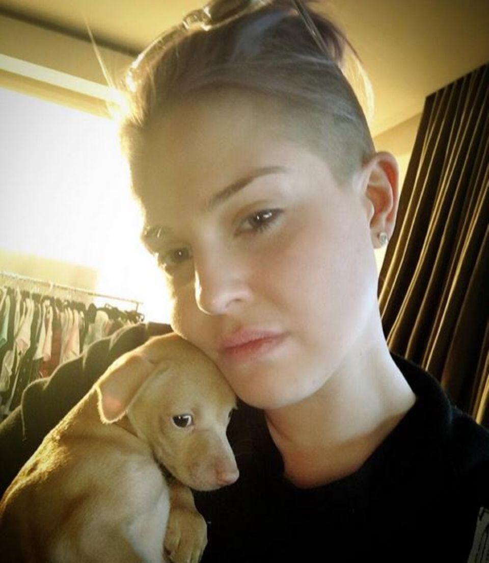 Kelly Osbourne ist eine echte Tierschützerin: Dieses zitternde Hundebaby ist an Hauptkreuzungen durch die Autos gereicht worden um so illegal verkauft zu werden.