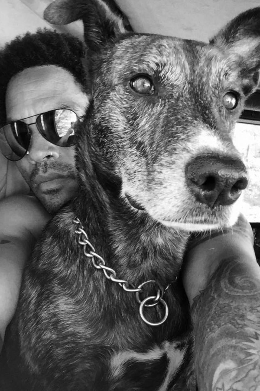 """Rockstar Lenny Kravitz verbingt einen """"Dog Day Afternoon"""" mit seinem liebsten Vierbeiner."""