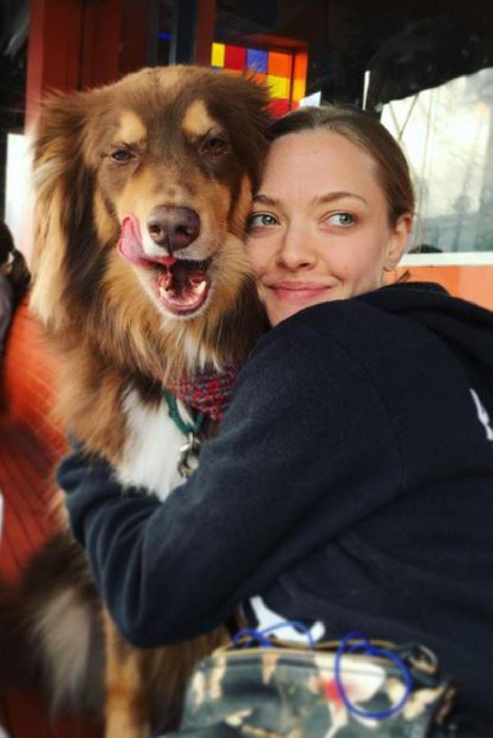 Amanda Seyfried und ihr Hund Finn sind ein Herz und eine Seele.