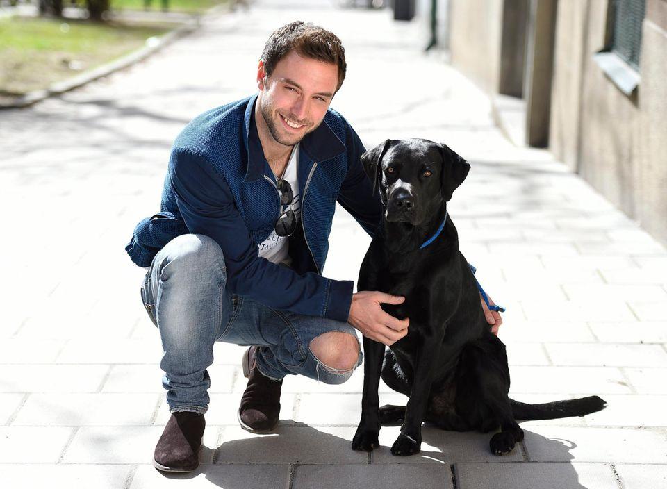 Hero mit Hund: ESC-Sieger Måns Zelmerlöw stellt beim Fototermin in Stockholm seinen Hund namens Messi vor.