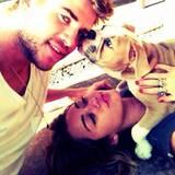 """Liam Hemsworth freut sich über den Kuss des Hundes seiner Verlobten Miley Cyrus und twittert: """"Das ist Leben ist toll""""."""