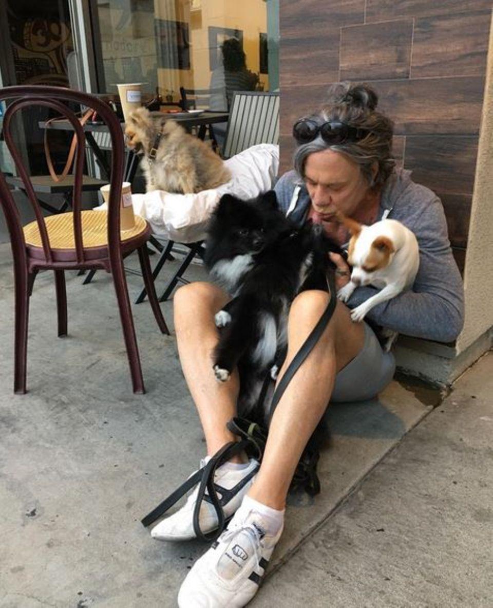 Mickey Rourke liebt seine Hunde Egor, Ivan, Crybaby und #1.