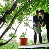 22. Juni 2011: Gemeinsam bewässern Bundespräsident Christian Wulff und Japans Kronprinz Naruhito einen Kirschbaum im Schlossgart