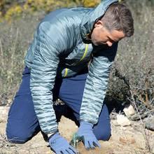 """Ryan Reynolds pflanzt für """"American Forests"""" den 50-millionsten Baum. Er trauft ihn auf den Namen Gordon."""