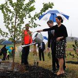 Während ihres Staatsbesuchs in Australien pflanzen und bewässern Prinzessin Mary und Priz Frederik von Dänemrak einen Baum in de