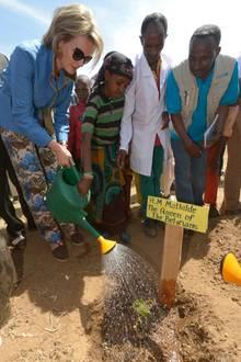 Königin Mathilde von Belgien nimmt an einer humanitären Reise von UNICEF in Äthiopien teil. Zur Eröffnung einer Schule pflanz sie symbolisch einen Baum.