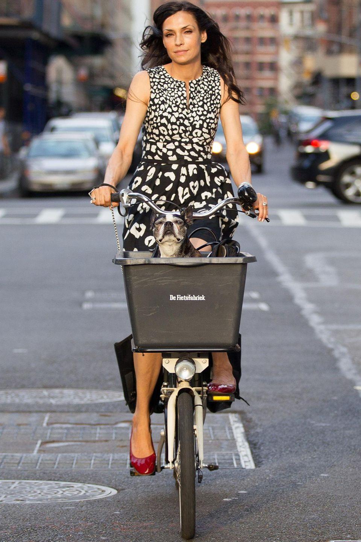 Famke Janssen radelt durch New York. Licorice, der Hund der Schauspielerin, lässt sich dabei im Korb den Fahrtwind um die Nase wehen.