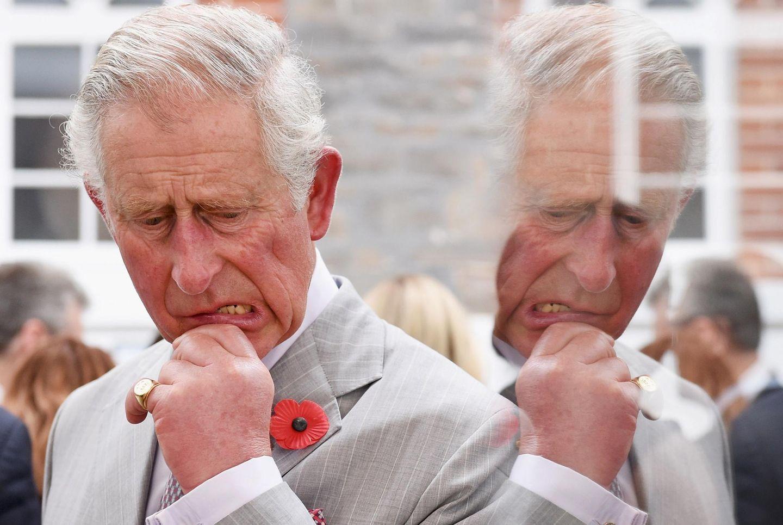 Ob die Flaschen reichen? Prinz Charles wirkt etwas skeptisch während er ein Weingut in Südafrika besucht.