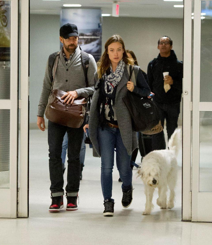 """Zurück in New York City: Olivia Wilde kommt hochschwanger und mit Mann Jason Sudeikis und Hund am """"JFK Airport"""" an."""
