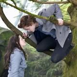 """Szenenbild aus """"Twilight"""" Nr.16"""