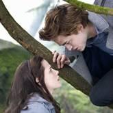 "Szenenbilder aus ""Twilight"""