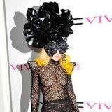 Lady GaGa setzt auf den Netz-Look, der sie von Kopf bis Fuß kleidet.