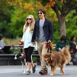 16. Oktober 2013: Amanda Seyfried und Justin Long gehen mit ihren Hunden im New Yorker Washington Square Park Gassi.