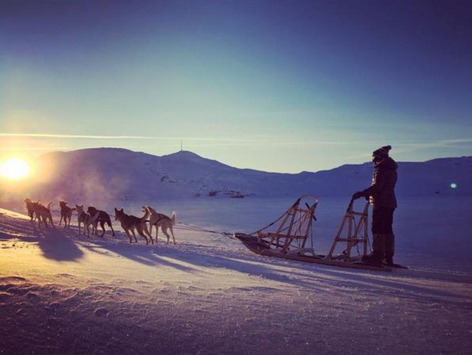 Die Sängerin Ellie Goulding erkundet per Hunde-Schlitten die norwegischen Weiten. Gut, dass die Hunde wissen wo es lang geht.