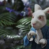 Das weiße Kaninchen darf natürlich nicht fehlen.