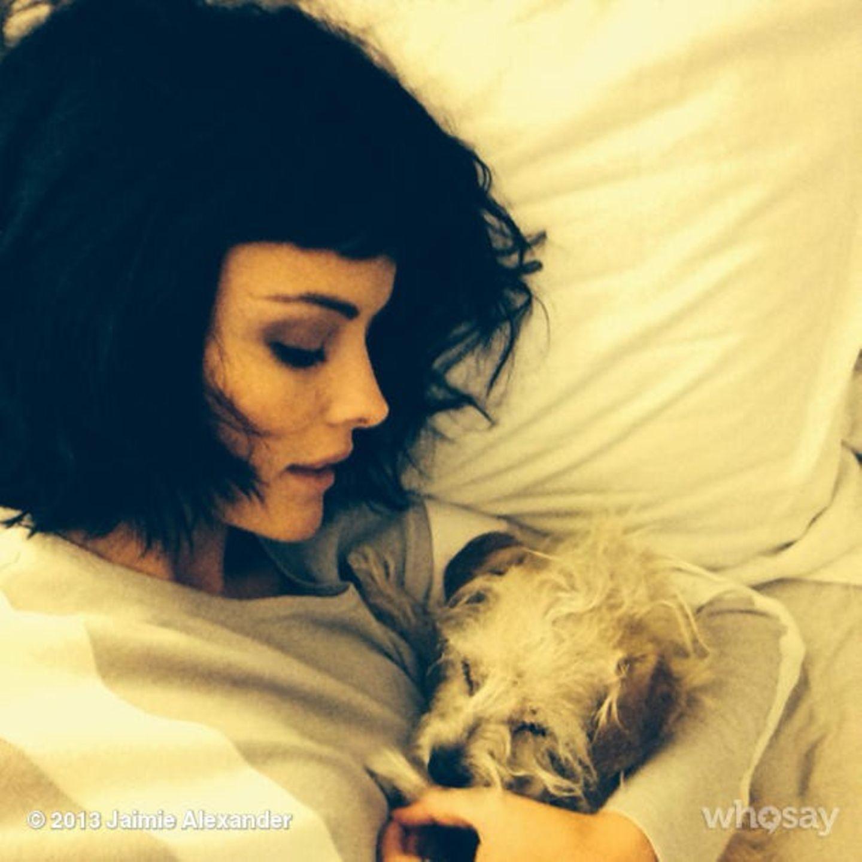 November 2013  Jaimie Alexander kuschelt mit ihrem kleinen Hund Bonnie.