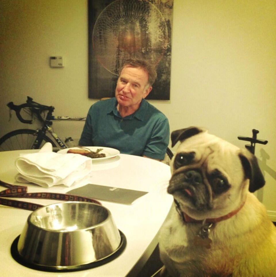 Wie der Hund so das Herrchen: Robin Williams isst mit seinem Hund Leonard zu Abend.
